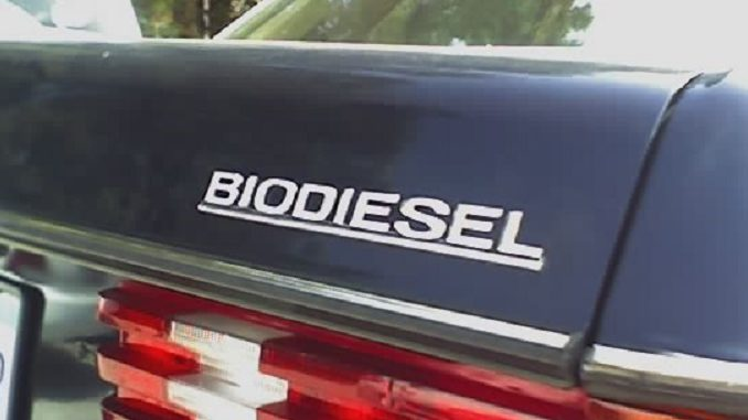 Foto: Mejidori / Wikimedia Biokraftstoff, Biodiesel, Bioethanol, HVO,