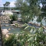 Fischpass am Wasserkraftwerk Rheinfelden. Foto: NaturEnergie