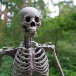 Klimaschutzplan: Was von einer gefledderten Leiche übrig bleibt