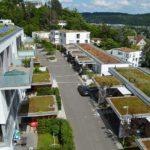 Dachbegrünung: Gut für Klima, Dämmung und Abwasserkosten