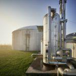 Biogas: Zukauf gegen den Trend