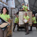 Holzhandel in Deutschland: Zwischen Arbeitskräftemangel, Nachhaltigkeit und Grauimporten
