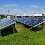 PV-Anlage auf dem Gründach - eine mögliche Kombination