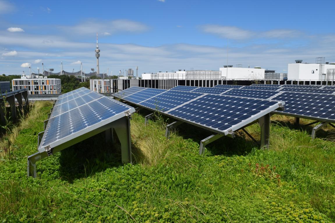 PV-Anlage auf dem Gründach – eine mögliche Kombination