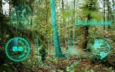 Mit Digitalisierung gegen das Waldsterben